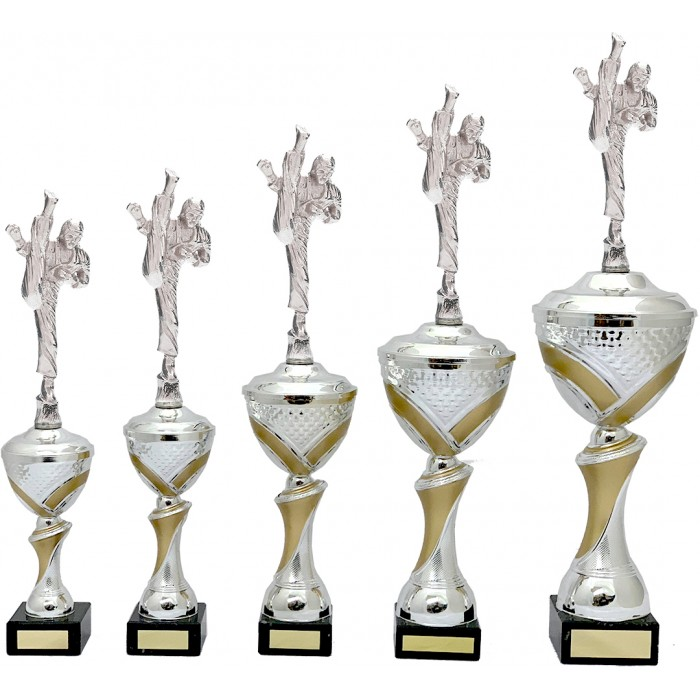MARTIAL ARTS METAL TROPHY  - AVAILABLE IN 5 SIZES