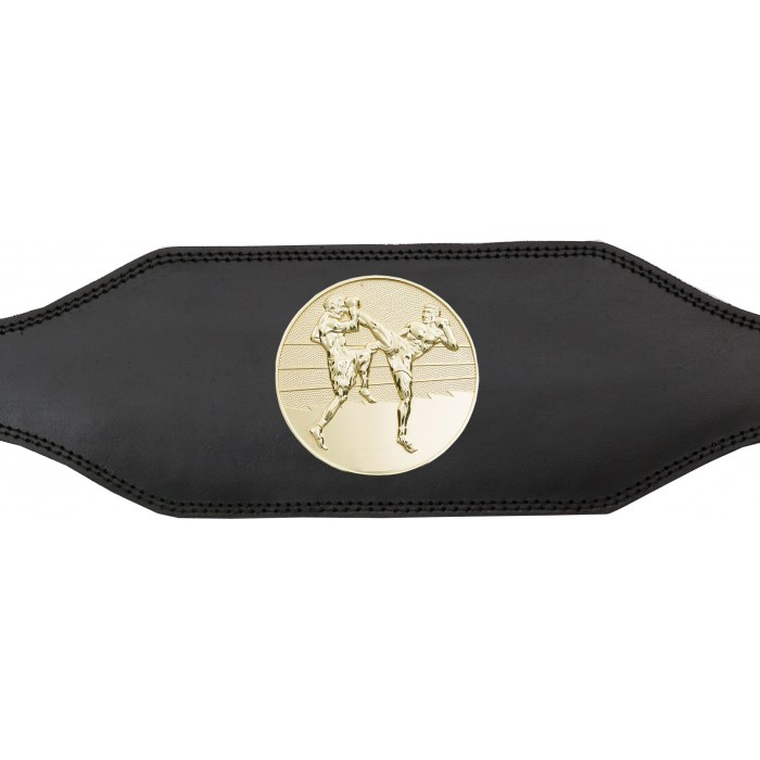 THAI BOXING CHAMPIONSHIP BELT-BUD001/TBOG-4 COLOURS