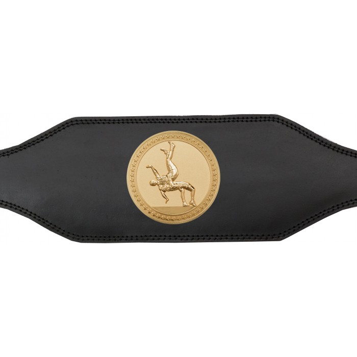 WRESTLING CHAMPIONSHIP BELT-BUD001/WRESTG-4 COLOURS