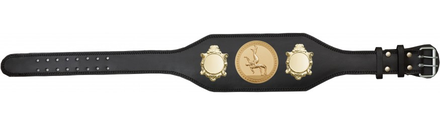 WRESTLING CHAMPIONSHIP BELT-BUD003/G/WRESTG-4 COLOURS
