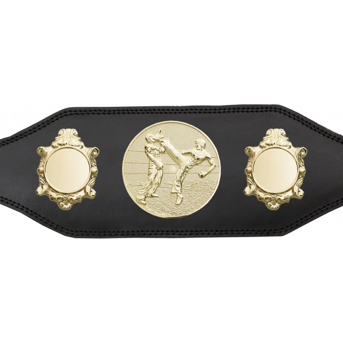 KICKBOXING TITLE BELT-BUD003/G/KBOG -IN 4 COLOURS
