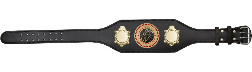 WRESTLING CHAMPIONSHIP BELT-BUD003/G/WRESTGEMG-4 COLOURS