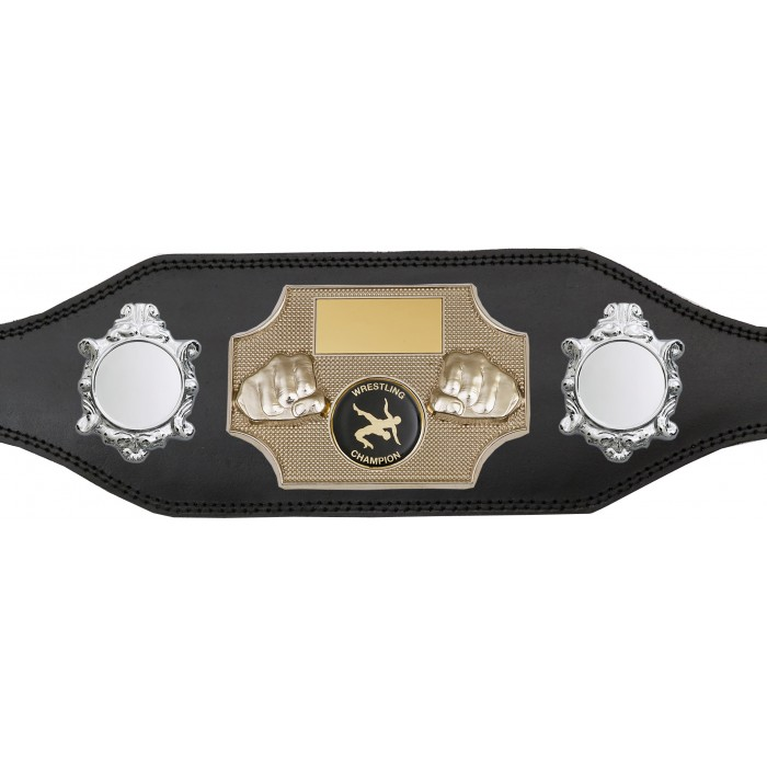 WRESTLING CHAMPIONSHIP BELT-BUD297/S/WREST-4 COLOURS