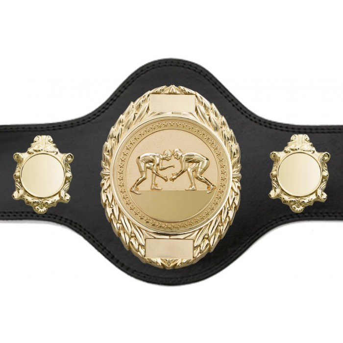 GRAPPLING CHAMPIONSHIP BELT-PLT286/G/GRAPG-4 COLOURS