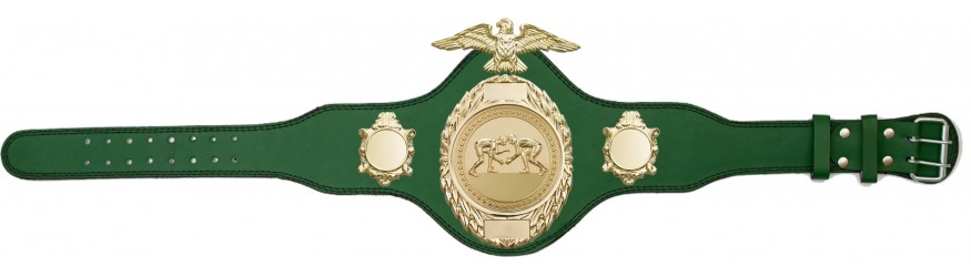 GRAPPLING CHAMPIONSHIP BELT-PLT288/G/GRAPG-4 COLOURS