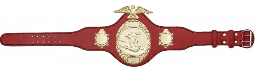 MMA CHAMPIONSHIP TITLE BELT-PLT288/G/MMAG-4 COLOURS