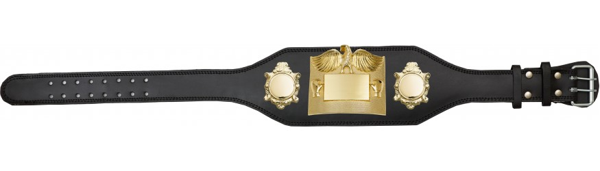 TITLE BELT - PLT299/G/BLG - AVAILABLE IN 4 COLOURS