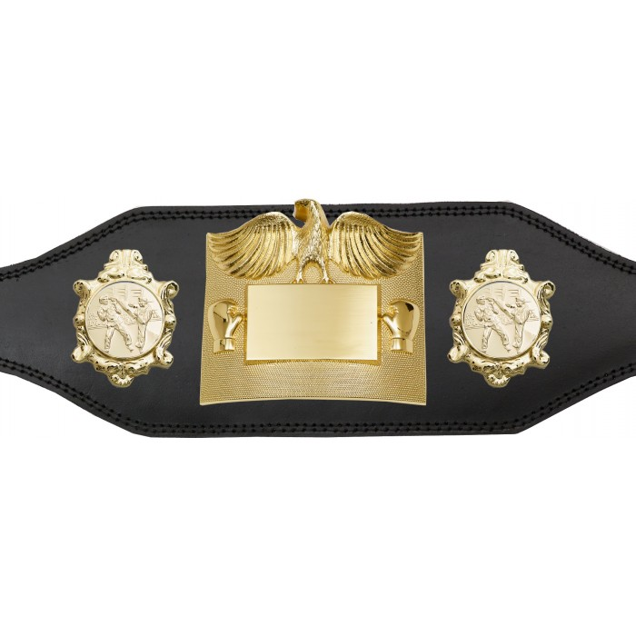 KICKBOXING CHAMPIONSHIP BELT - PLT299/G/SPA -4 COLOURS