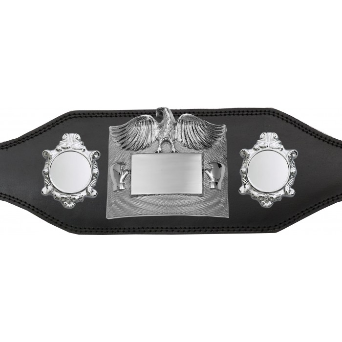 TITLE BELT - PLT299/S/BLS - AVAILABLE IN 4 COLOURS