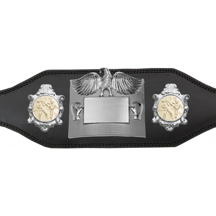KICKBOXING CHAMPIONSHIP BELT - PLT299/S/SPA -4 COLOURS