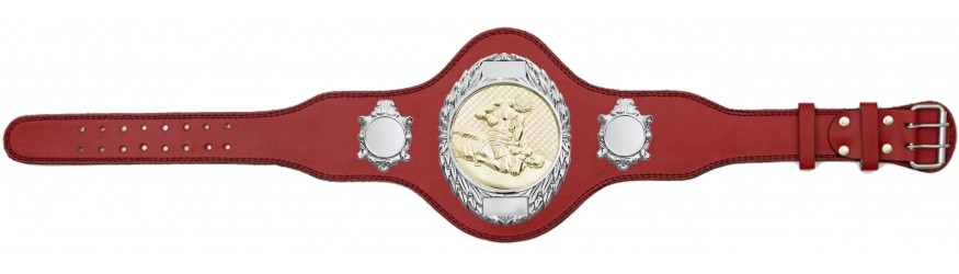MMA CHAMPIONSHIP BELT-PLT286/S/MMAG-4 COLOURS