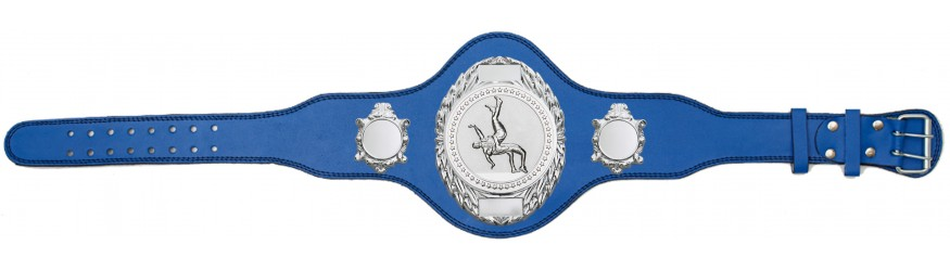 WRESTLING CHAMPIONSHIP BELT-PLT286/S/WRESTS-4 COLOURS