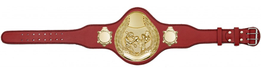 THAI BOXING CHAMPIONSHIP BELT-PLT301/G/TBOG-4 COLOURS