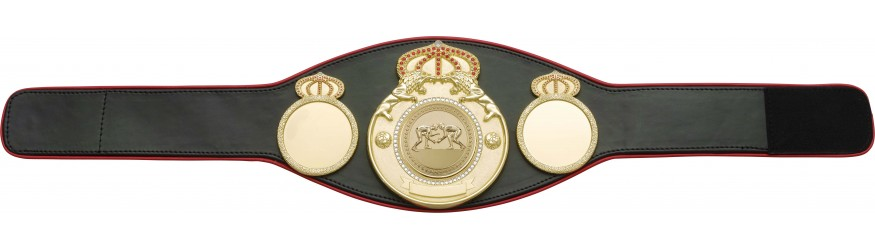 NEW TO RANGE - CHAMPIONSHIP BELT PROLION - AVAILABLE IN 6+ COLOURS