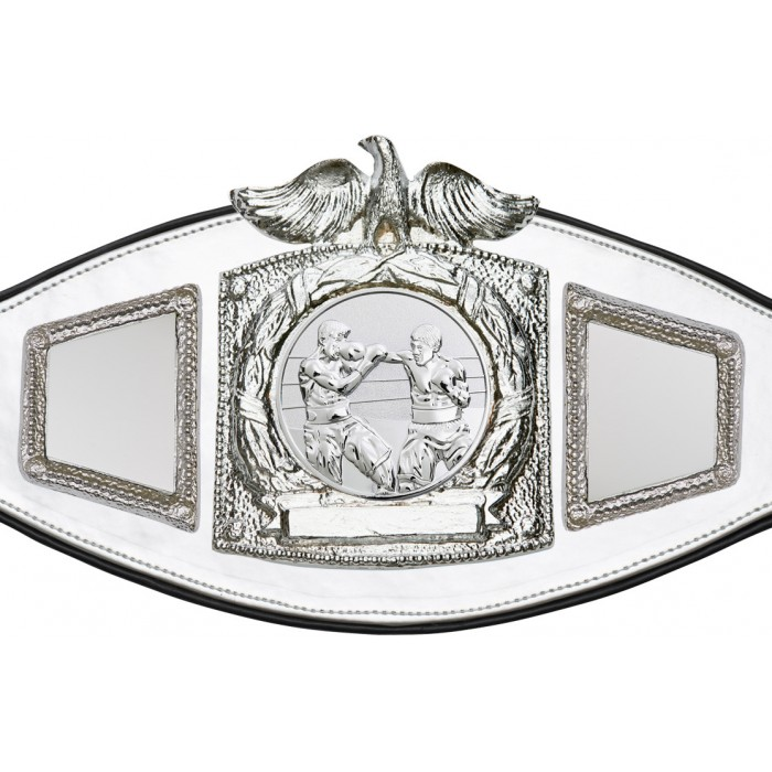 BOXING CHAMPIONSHIP BELT-PROEAGLE/S/BOXS-6+ COLOURS