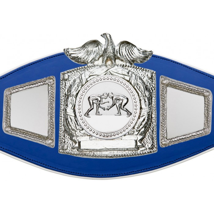 GRAPPLING CHAMPIONSHIP BELT-PROEAGLE/S/GRAPS-6+ COLOURS