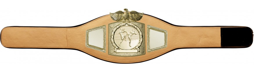 THAI BOXING CHAMPIONSHIP BELT-PROEAGLE/G/TBOG-6+ COLOURS