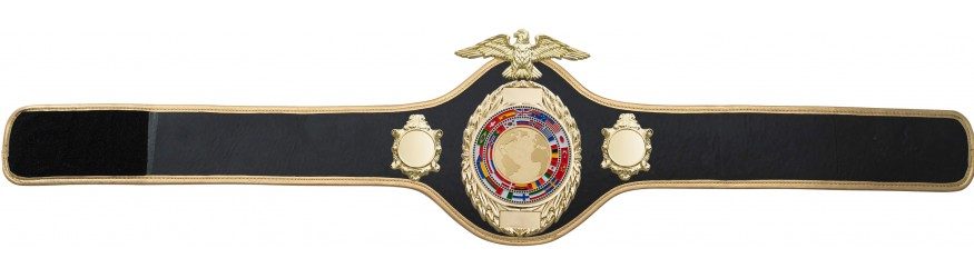 CHAMPIONSHIP BELT PRO288/GOLD/FLAGG - AVAILABLE IN 10 COLOURS