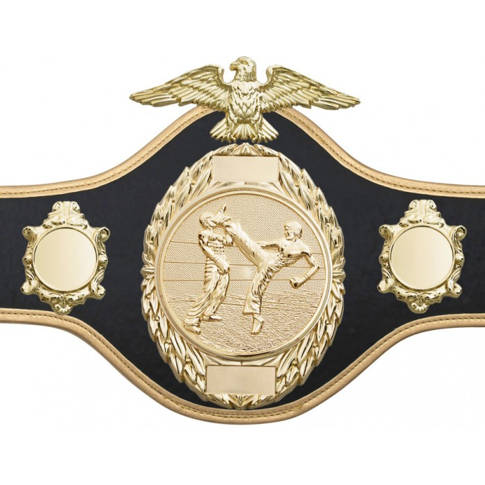 KICKBOXING CHAMPIONSHIP BELT-PRO288/GOLD/KBOG-10 COLOURS