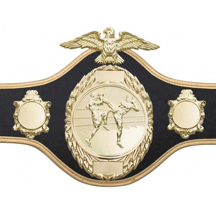 THAI BOXING CHAMPIONSHIP BELT-PRO288/GOLD/TBOG-10 COLOURS