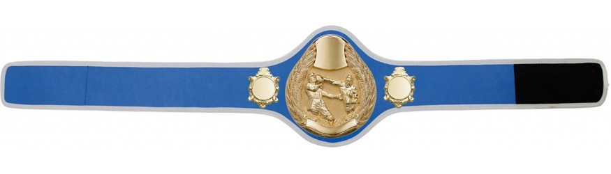 BOXING CHAMPIONSHIP BELT-PRO301/G/BOXG- 10 + COLOURS