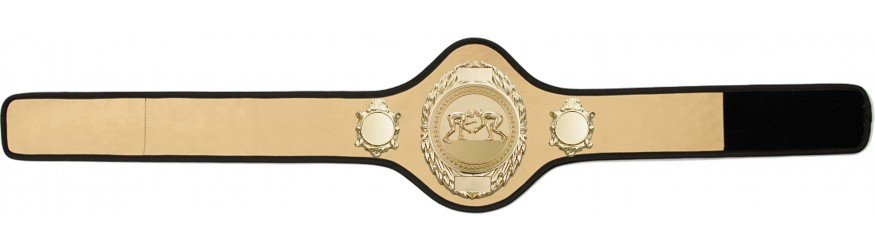 GRAPPLING CHAMPIONSHIP BELT-PRO286/G/GRAPPG-10+ COLOURS