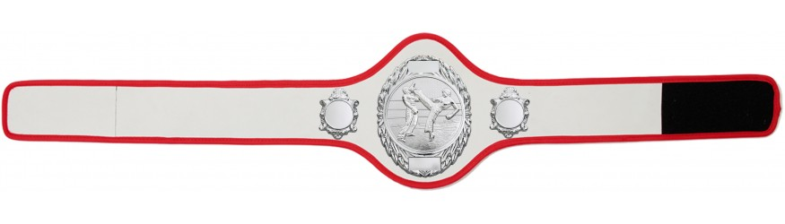 KICKBOXING CHAMPIONSHIP BELT-PRO286/S/KBOS-10+ COLOURS