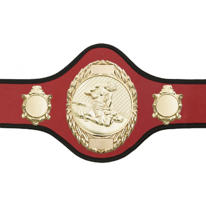 MMA CHAMPIONSHIP BELT-PRO286/G/MMAG-10+ COLOURS