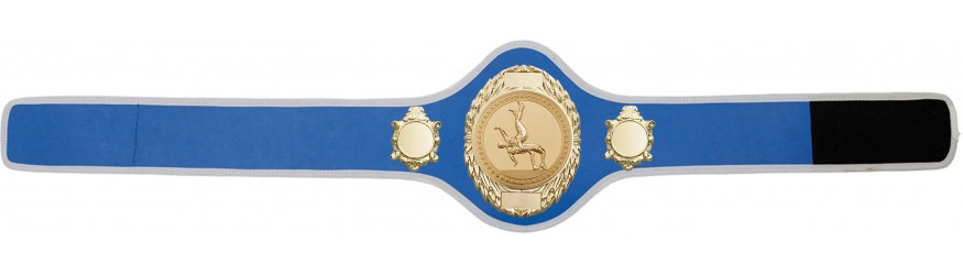 WRESTLING CHAMPIONSHIP BELT-PRO286/G/WRESTG-10+ COLOURS