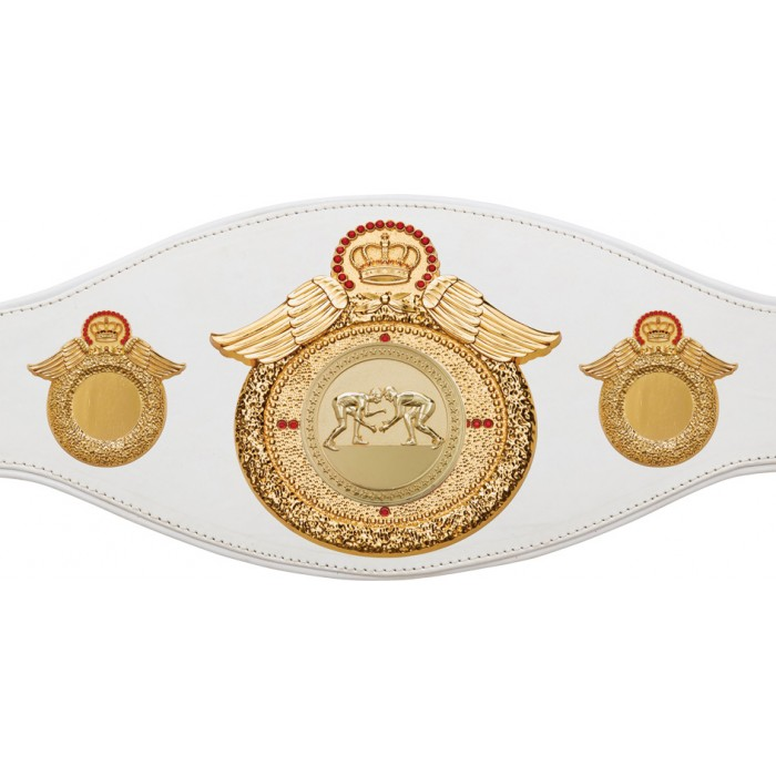GRAPPLING CHAMPIONSHIP BELT-PROWING/G/GRAPPG-6+ COLOURS