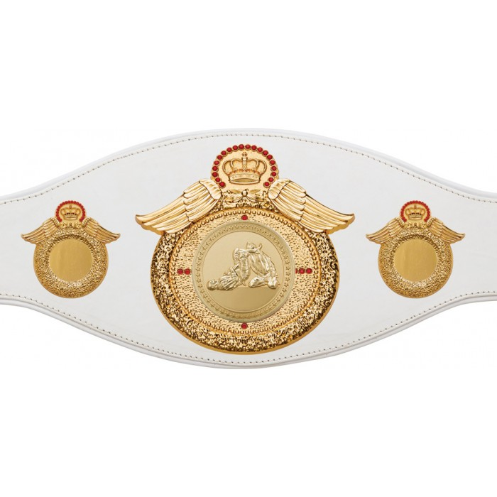JIU JITSU CHAMPIONSHIP BELT-PROWING/G/JJG-6+ COLOURS