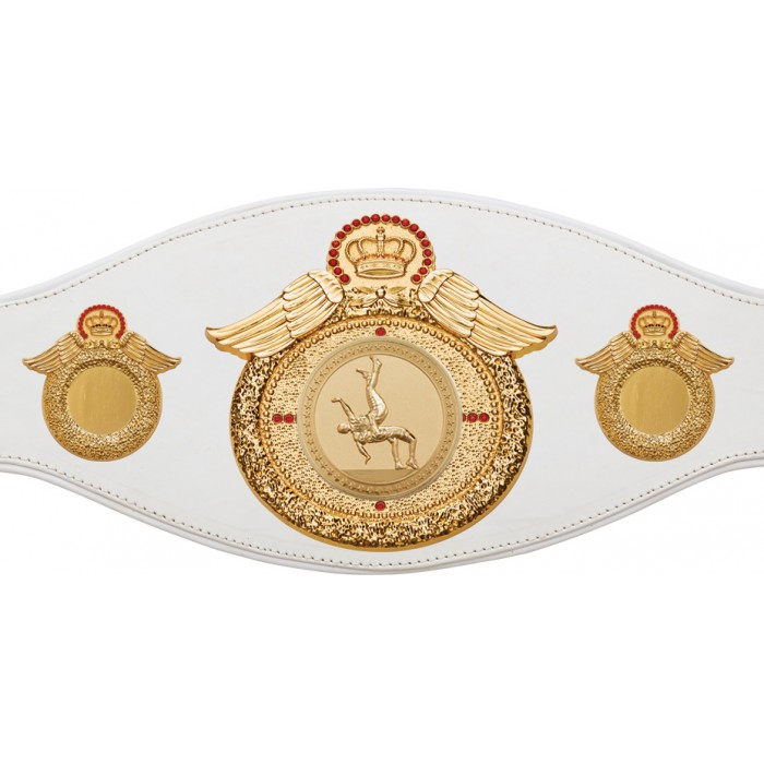 WRESTLING CHAMPIONSHIP BELT-PROWING/G/WRESTG-6+ COLOURS