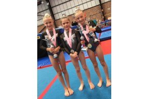 What makes a great gymnastics club?