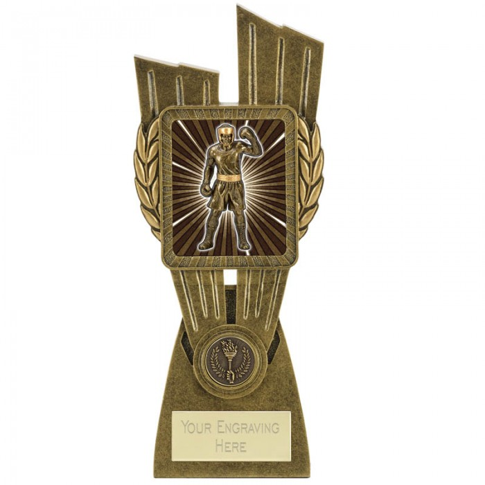 SHOWCASE BOXING RESIN TROPHY 3 SIZES STARTING FROM 7''