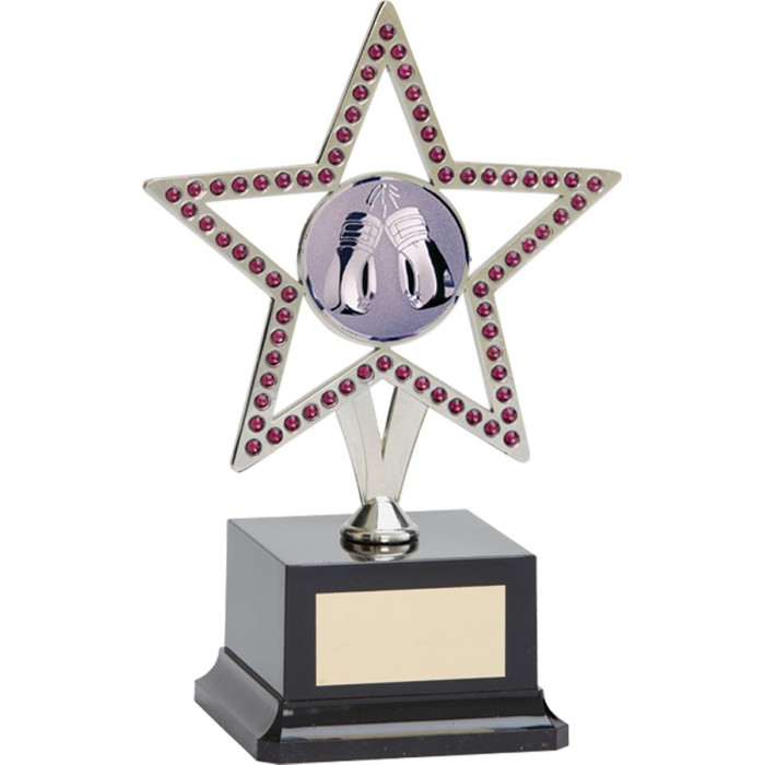 10'' SILVER METAL STAR WITH PURPLE GEMSTONES - BOXING TROPHY