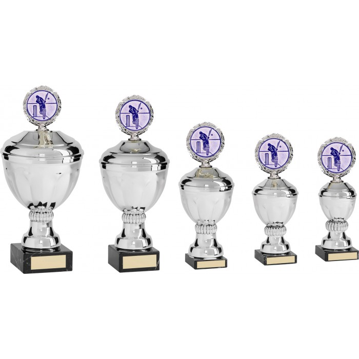 METAL CRICKET TROPHY WITH CHOICE OF SPORTS CENTRE  - AVAILABLE IN 5 SIZES