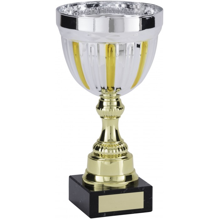 GOLD/SILVER METAL TROPHY CUP ON GOLD RISER AVAILABLE IN 4 SIZES