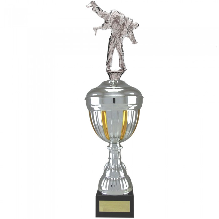 JIU JITSU  FIGURE METAL TROPHY  - AVAILABLE IN 4 SIZES