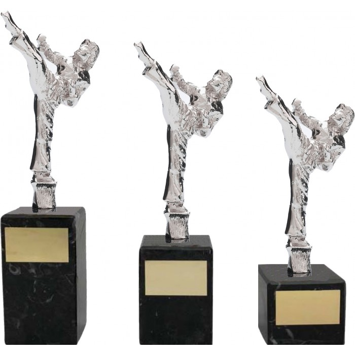 MARTIAL ARTS METAL TROPHY - 3 SIZES