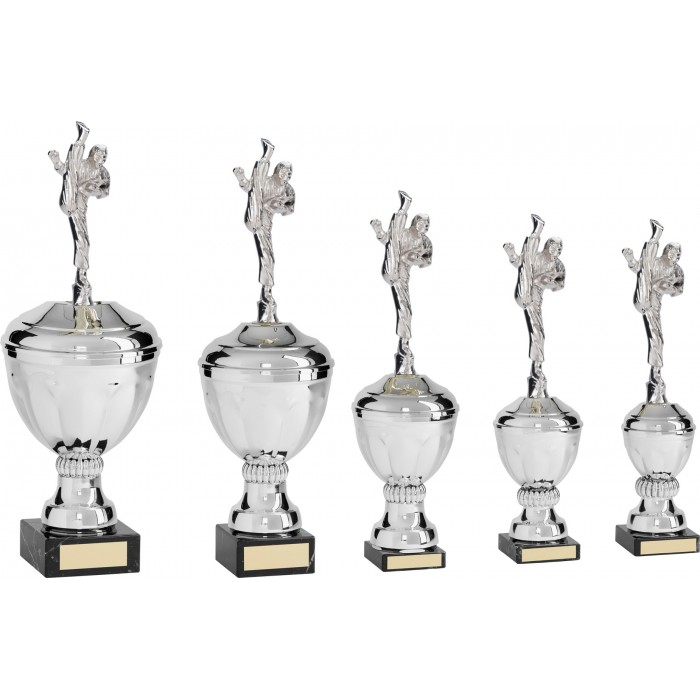 AXE KICK METAL KARATE TROPHY  - AVAILABLE IN 5 SIZES