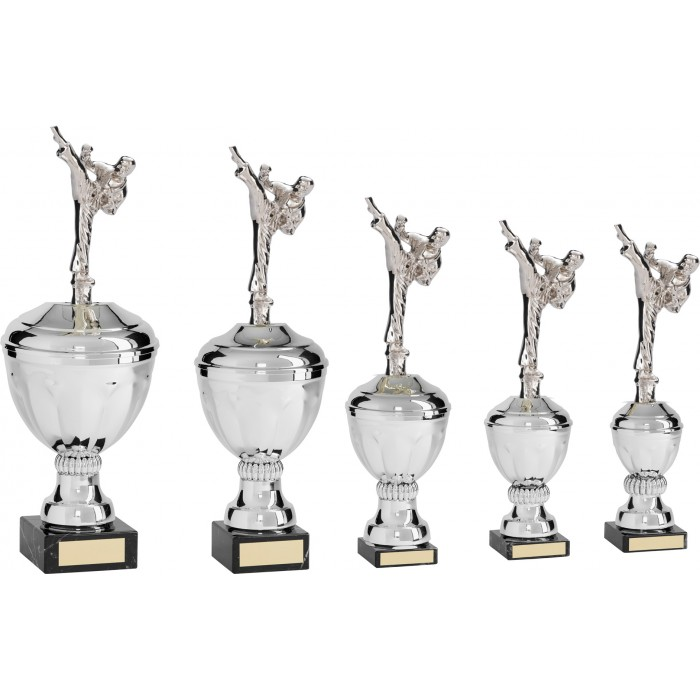 MALE ROUNDHOUSE TAEKWONDO TROPHY  - AVAILABLE IN 5 SIZES