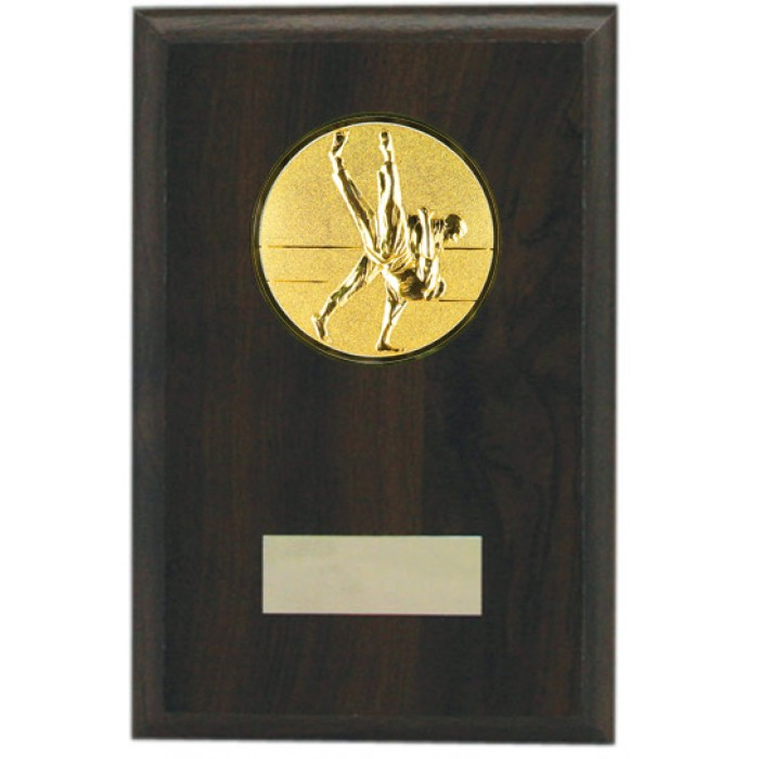 Budget grappling wooden plaque 6'' -  choice of sports centre
