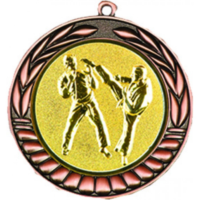 70MM BRONZE KARATE MEDAL