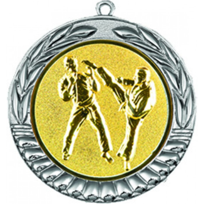 70MM SILVER KARATE MEDAL