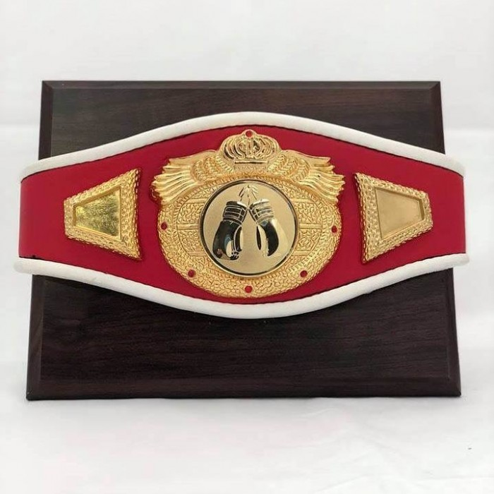 MINI CHAMPIONSHIP BELT MOUNTED ON WOOD - **SPECIAL INTRO PRICE**