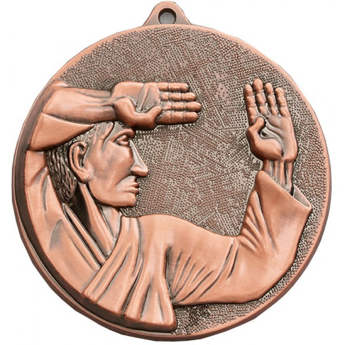 70MM X 6MM THICK BRONZE KARATE MEDAL