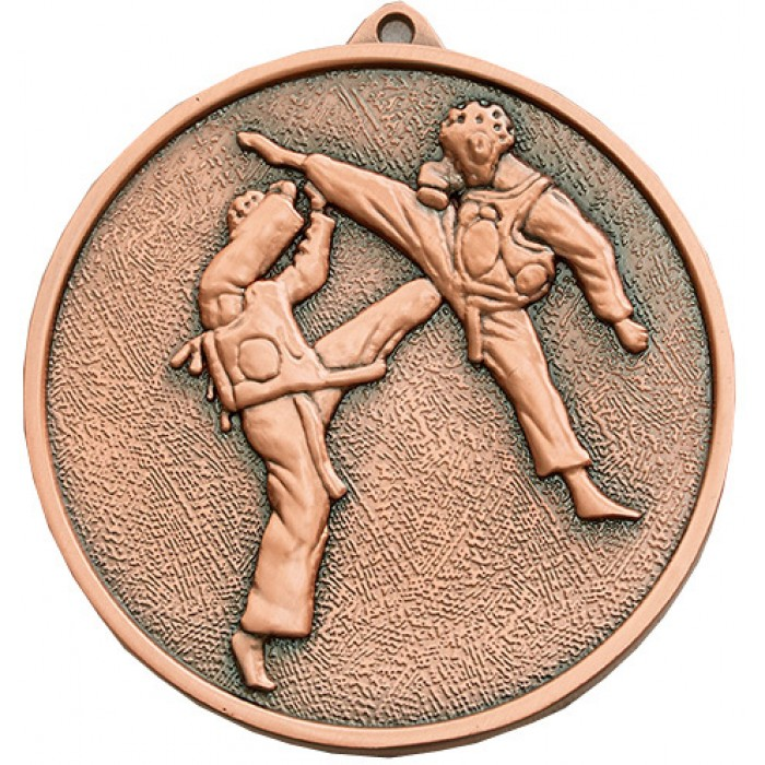 70MM X 6MM THICK BRONZE MARTIAL ARTS MEDAL