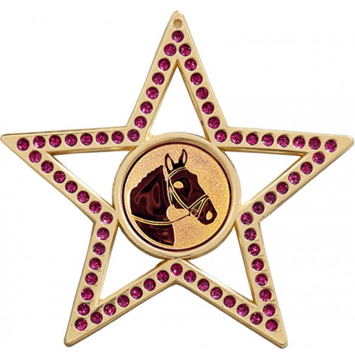 75MM STAR MEDAL - HORSERIDING - PURPLE - GOLD, SILVER & BRONZE