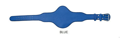 blue-oval-standard-leather